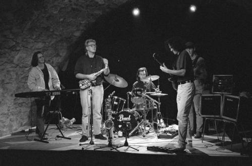 Wiesendanger 1992